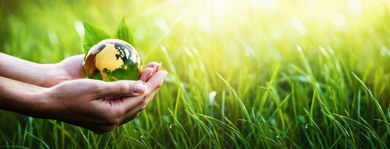 Green Planet in Your Hands - Wollsdorf